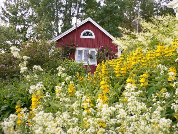 Garden house in the Swedish style plant yellow