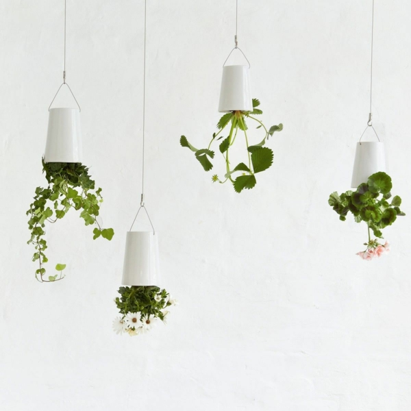 Green plants pictures reversed vertical garden