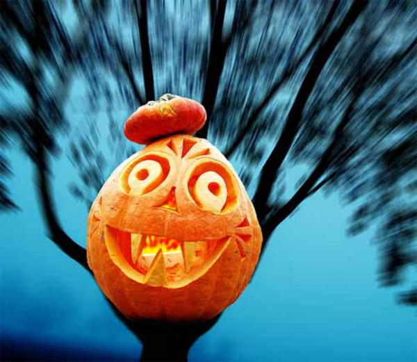 Horror halloween pictures funny faces pumpkin
