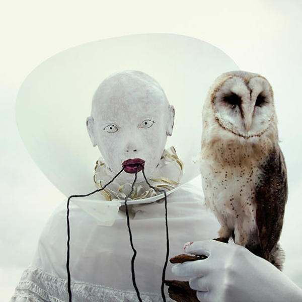 Surrealism pictures and features owl