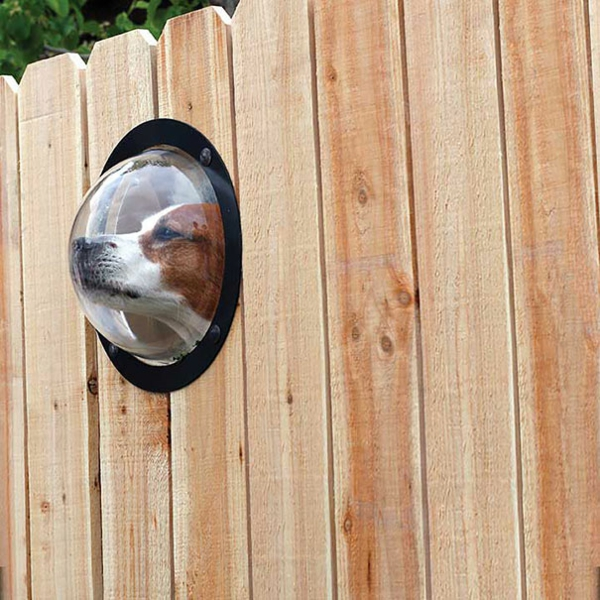 cool gift ideas dogs window fence