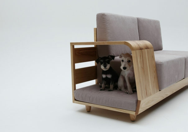 cool gift ideas sofa dogs hiding
