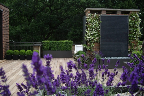 Cool roof terrace designs purple flowers