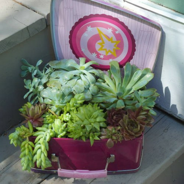 decorative ideas for the garden grease spray suitcase