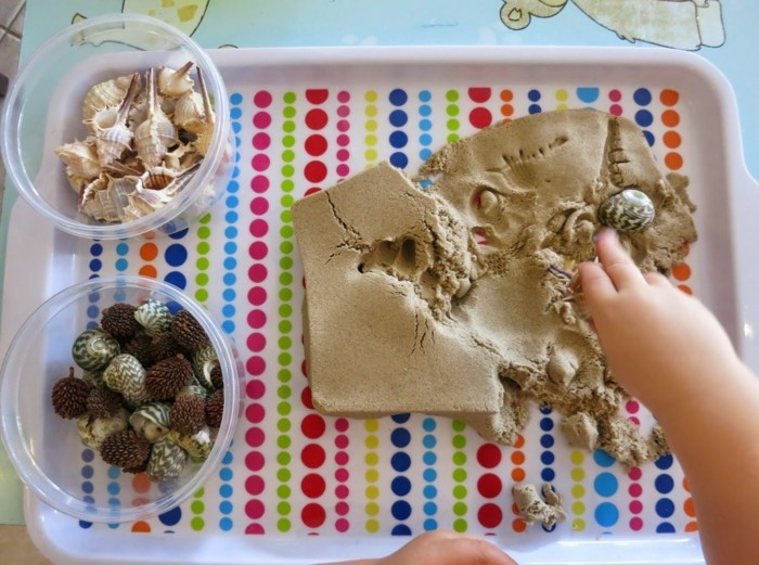 real shell and snails with kinetic sand