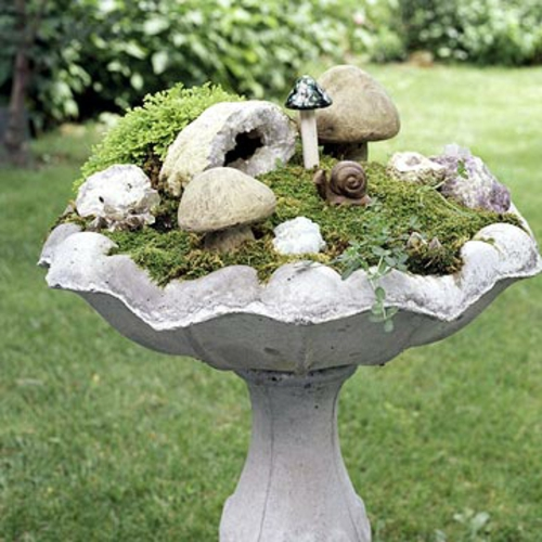 a mini garden shape mushrooms and snail