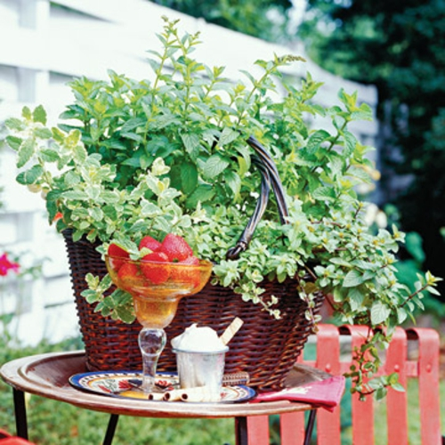 a mini garden shape wicker basket strawberries