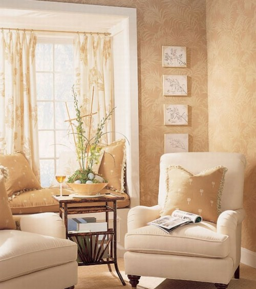 French country style living room idea sunlight