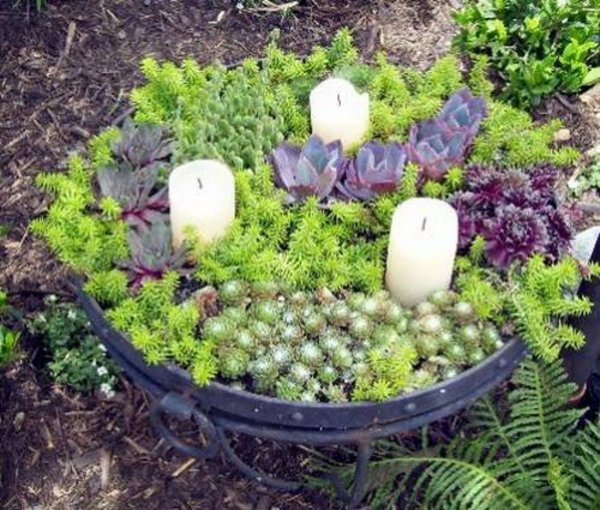 garden decoration fat plants candles