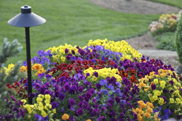 garden ideas garden design ideas garden lights colored flowers