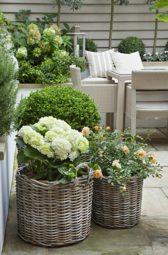 gardening garden design ideas flowers