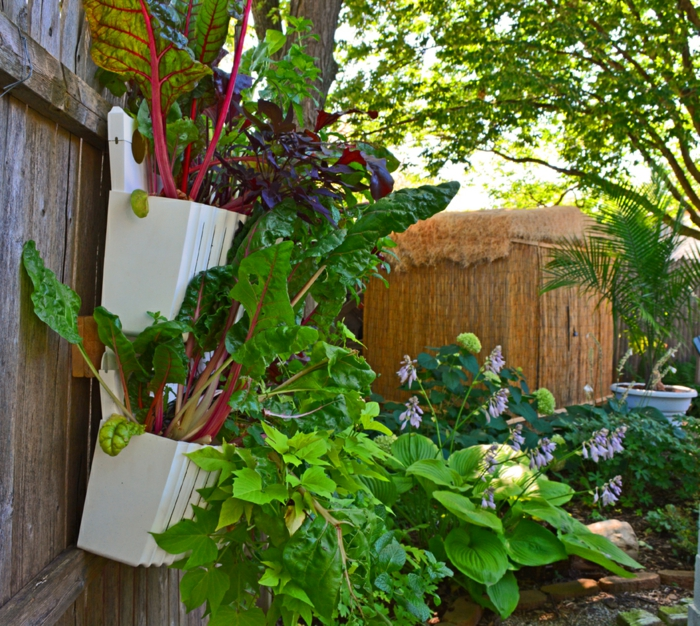 garden planning gardening ideas plants plant container garden fence