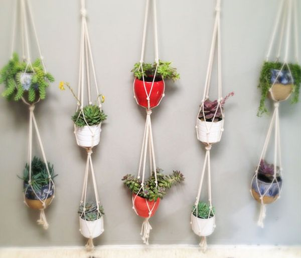 hanging flowerpots houseplants wall decor colored