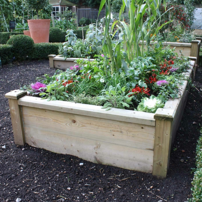 raised bed design wood plants garden design