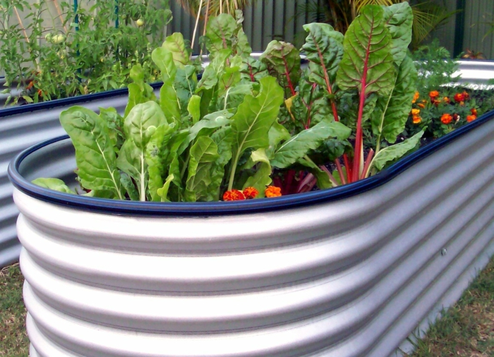 raised beds design plastic garden ideas