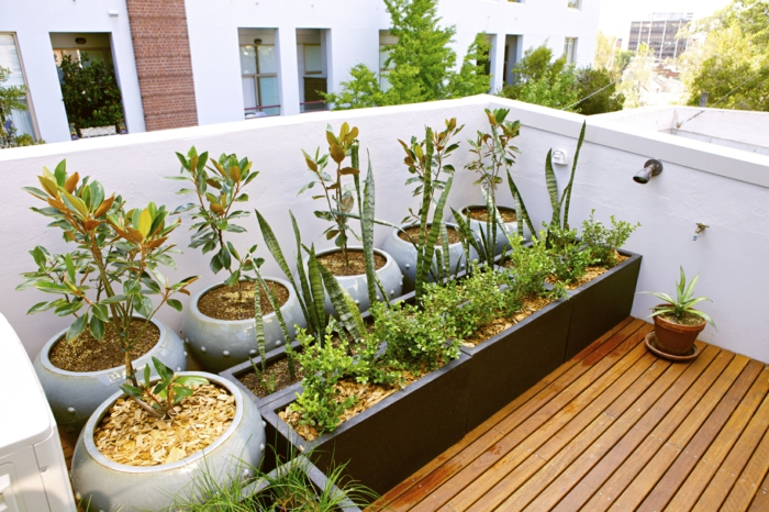 raised beds elegant design round plant container terrace shape