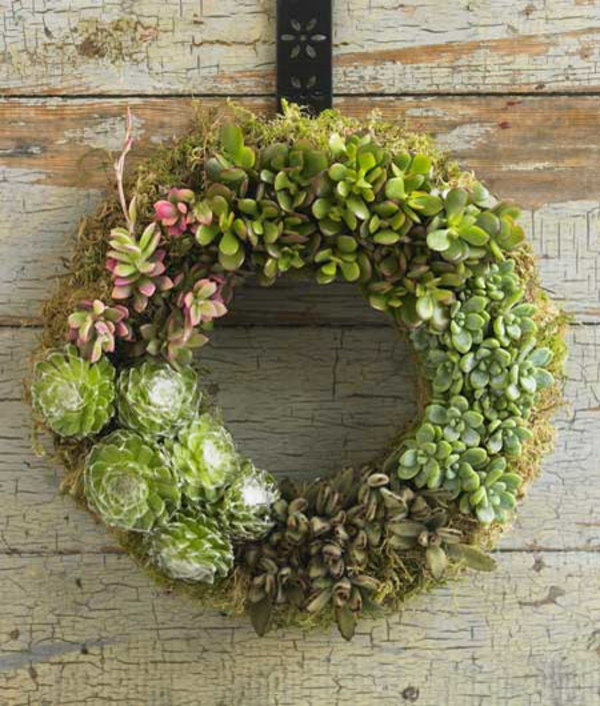 creative wreath succulent decoration