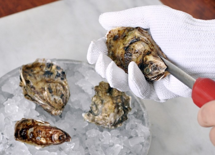 clean seafood species oysters
