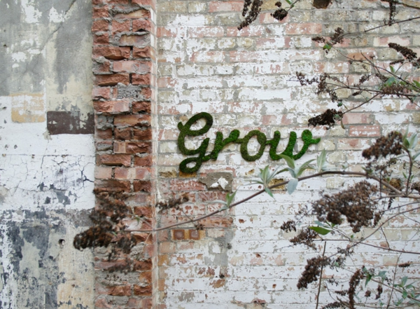 moss graffiti imagini graffiti artist anna garforth