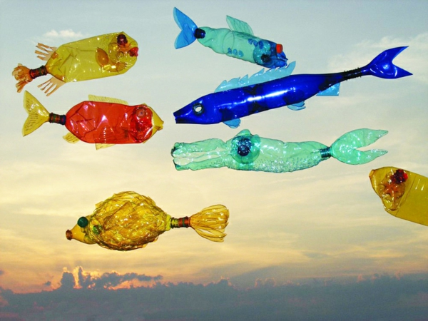 pet bottles art colorful fish marine fauna