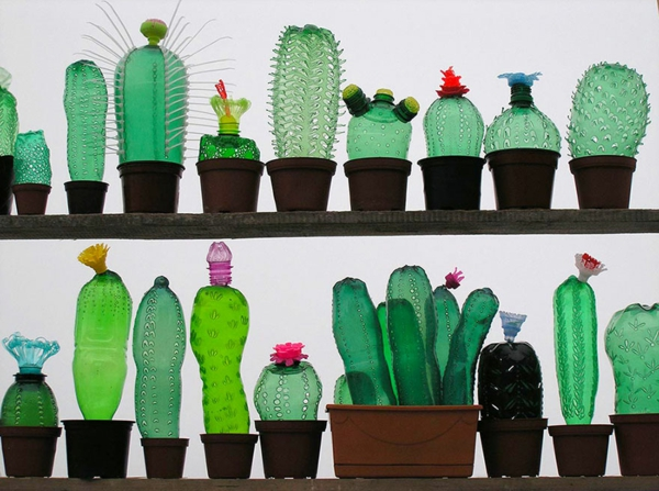 pet bottles art plants cacti