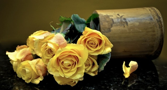 Rose color meaning yellow