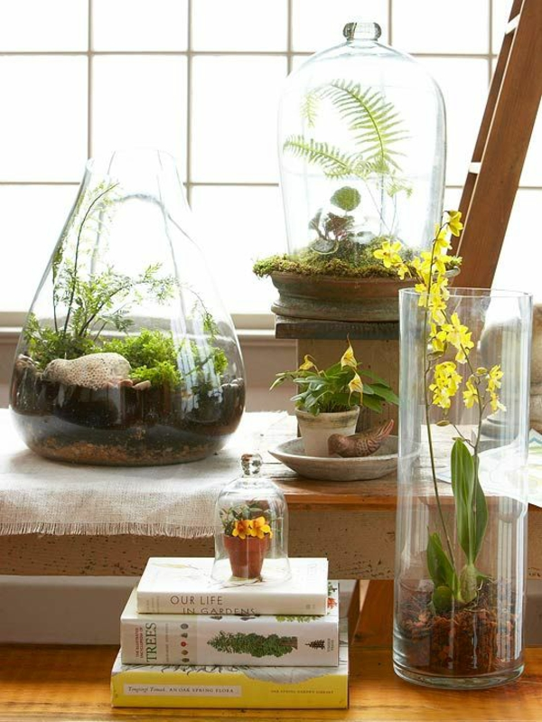 terrarium plants glass vessels deco ideas